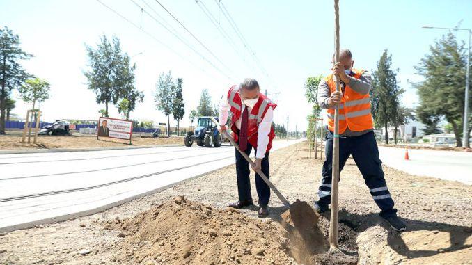 Antalya stage rail system guzergahi will smell orange blossom
