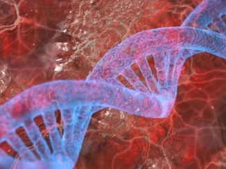 diverse researchers discover gene that causes epilepsy
