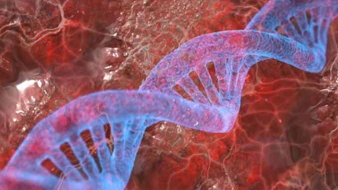 cinli arastirmacilar epilepsiye neden olan geni kesfetti