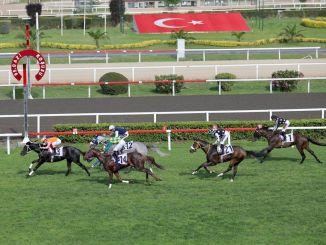 Burgas won the 95th Gazi Race with jockey Ahmet Çelik