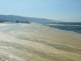 Ympäristöinsinöörien kammion ratkaisuehdotuksia merisylkeen