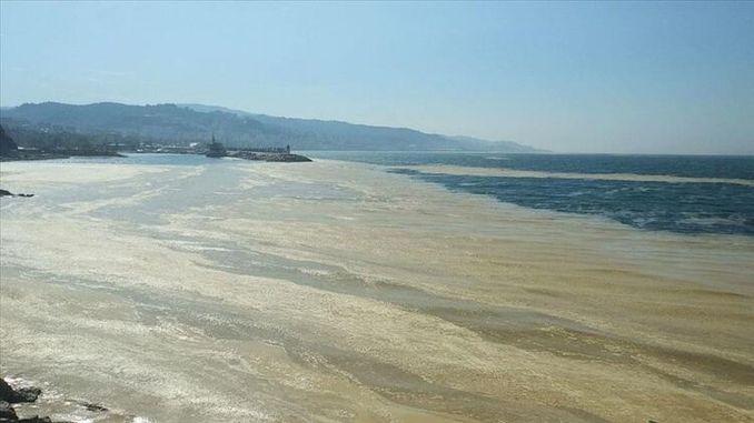 Προτάσεις λύσης από το θάλαμο μηχανικών περιβάλλοντος στο θαλάσσιο σάλιο
