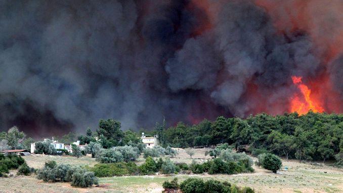 Начато расследование лесного пожара в Манавгате