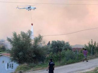 лісовий робітник загинув під час пожежі в Манавгаті