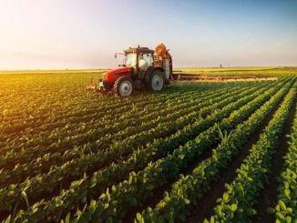 תשלומי התמיכה בחקלאות ישולמו היום לחשבונות היצרנים