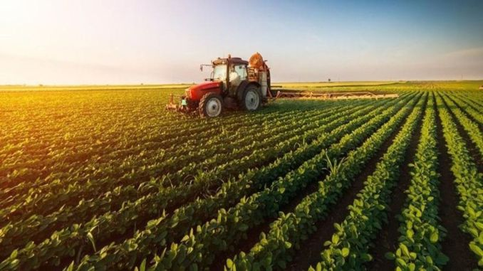 Agricultural support payments will be paid to the producers' accounts today