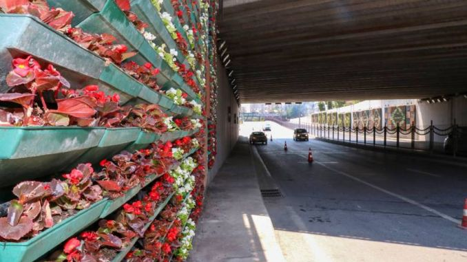 the vertical gardens of the pump bridge blossomed