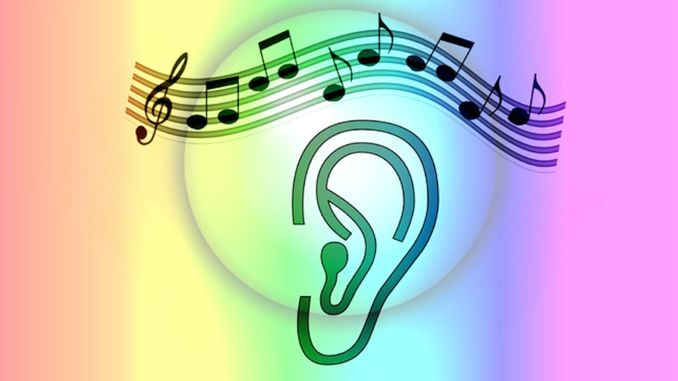 What is absolute ear?