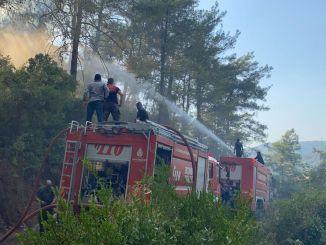 Seit drei Tagen bekämpfen die Teams von ibb die Brände