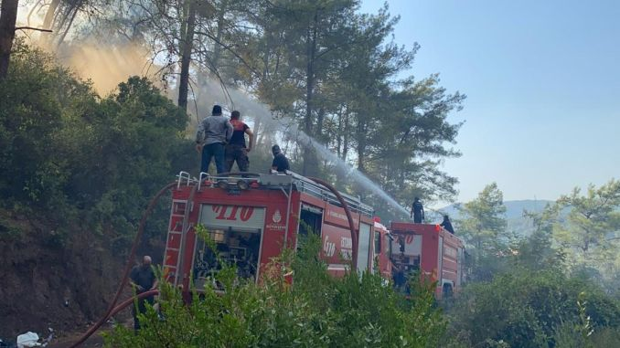 ibb's teams have been fighting the fires for three days