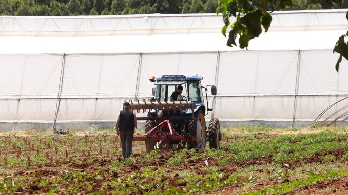 فرصة دفع الأقساط الدورية للعاملين في الأنشطة الزراعية