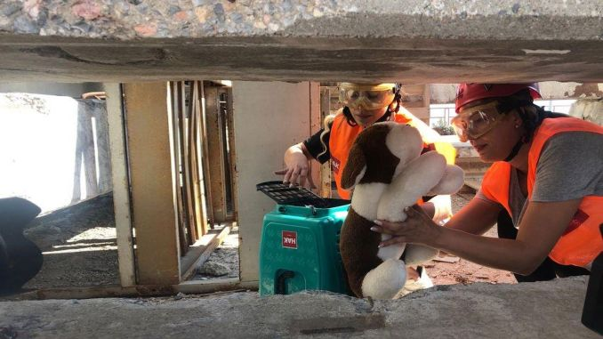 Izmir fire department gave training on animal search and rescue techniques in disasters