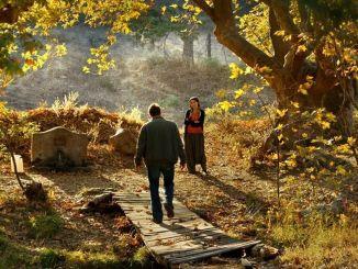 Turski filmovi puhat će u vjetar na međunarodnom filmskom festivalu Taskent