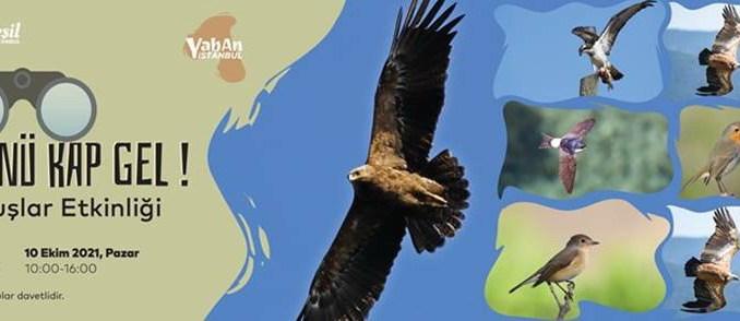 der große Camlica-Hain wird das Zugvogel-Event veranstalten