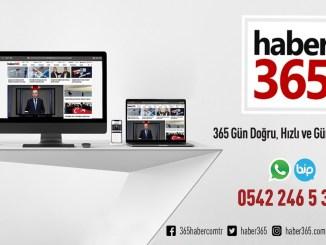 Haber 365
