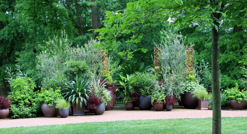 10 Potted Garden Ideas Haluchs Landscaping Products