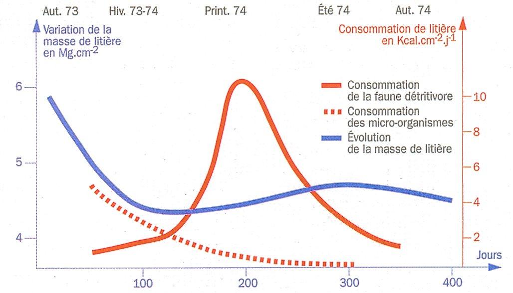 https://i0.wp.com/raymond.rodriguez1.free.fr/Documents/Biodiversite-popul/Sol_microfaune/graphique2.jpg