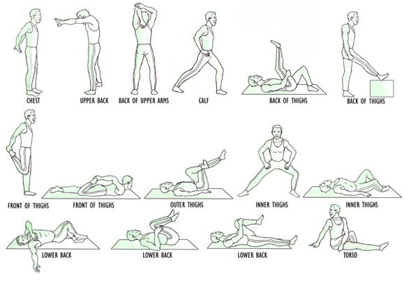 Yoga Exercise, Yoga Stretch, Fitness, Flexibility Stretch