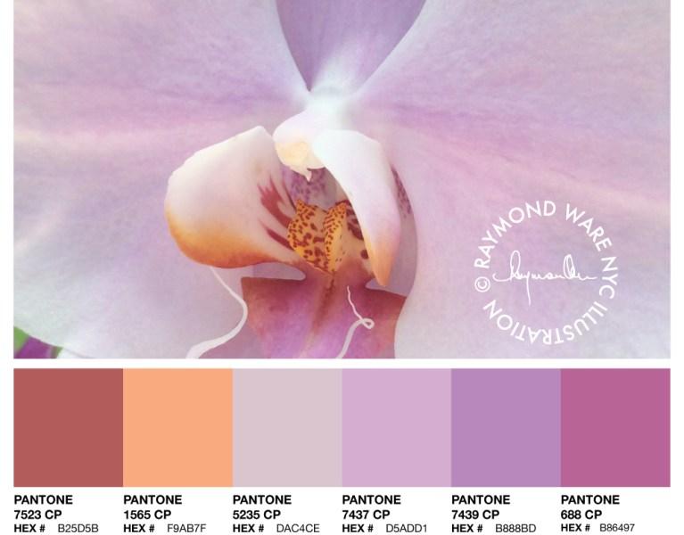 Pantone-Perfection-Orchid-Palette