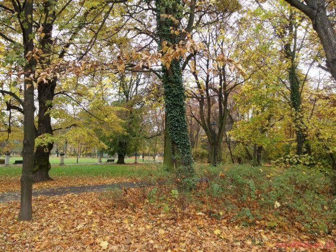 jesien-w-parku-jordana