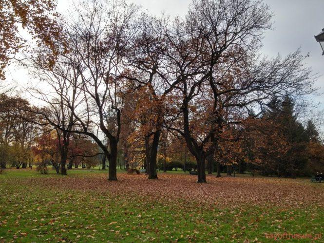 jesien-w-parku-jordana-18