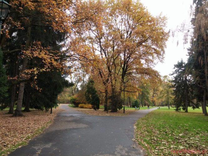 jesien-w-parku-jordana-23