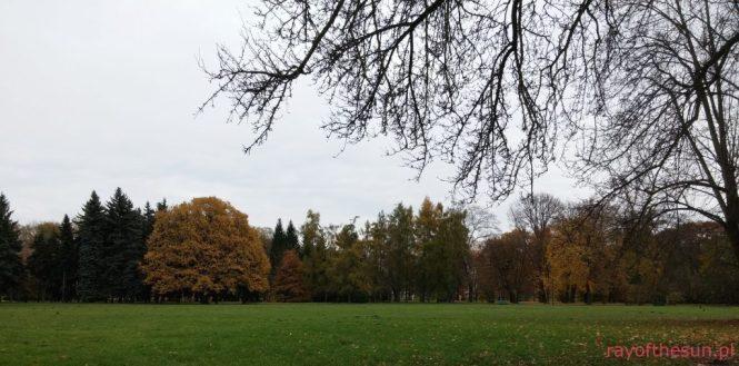 jesien-w-parku-jordana-9