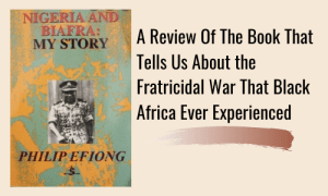 A Review Of The Book That Tells Us About the Fratricidal War That Black Africa Ever Experienced