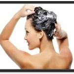 Que Shampoo Es Bueno Para El Cabello Graso Y Caspa
