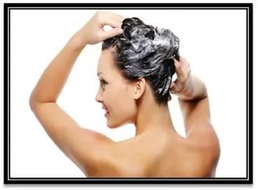 que shampoo es bueno para el cabello graso