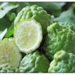 Uso Y Beneficios Del Aceite De Bergamota Para El Cabello