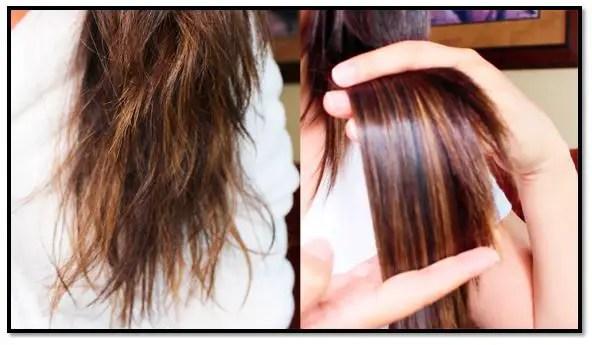 Tratamiento para el cabello reventado