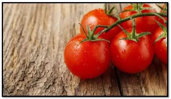 Shampoo de tomate