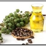 Beneficios Del Aceite De Castor Para El Cabello