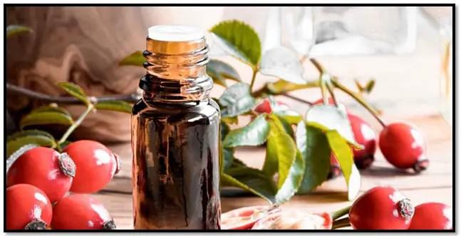 como preparar aceite de rosa mosqueta