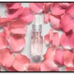 Como Hacer Agua De Rosas Para El Pelo