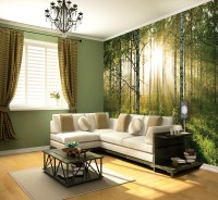 Wall Paint Ideas For Living Room With Best Forest ...