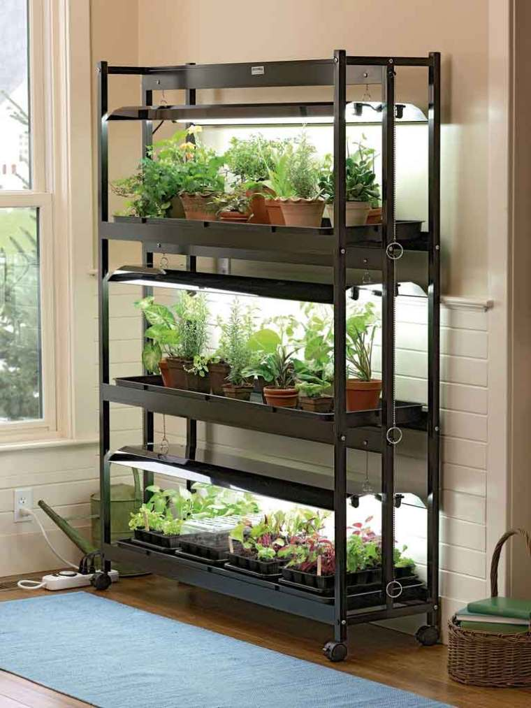 Tips and Trick to Make Indoor Greenhouse with Light | Raysa House
