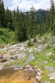 Dewar Creek Hot Springs Ray'