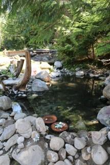 Halfway River Hot Springs Ray'
