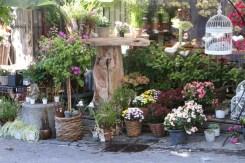 Flower shop in Zurich