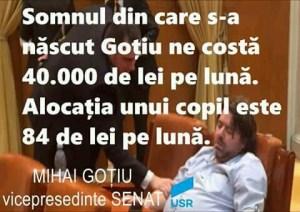 FB IMG 15369395607485733 300x212 - Referendumul costa milioane de euro