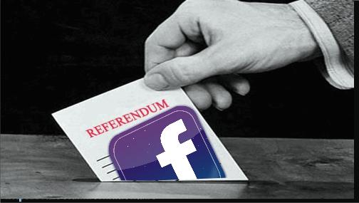 Gabriela Firea si Referendum