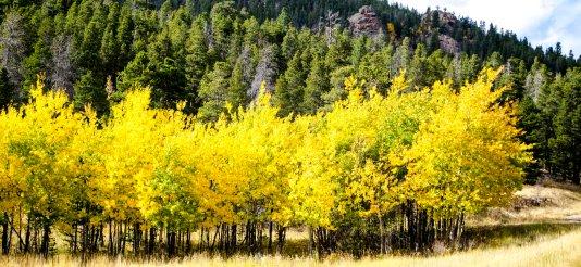 fall-colors-drive-2016-6816