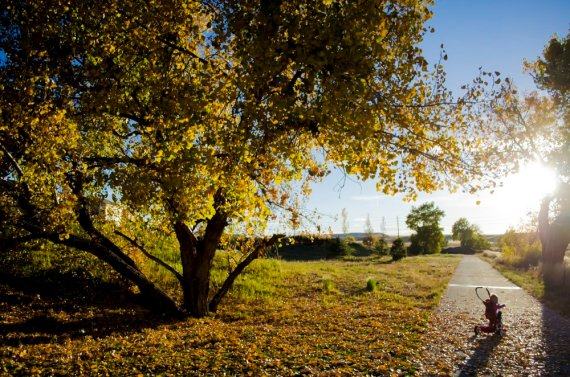 fall-photos-7028