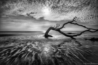 Monochrome – PHOTOGRAPHY