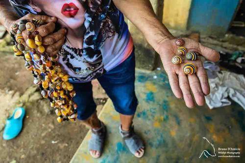 vendedor conchas caramujos pintados
