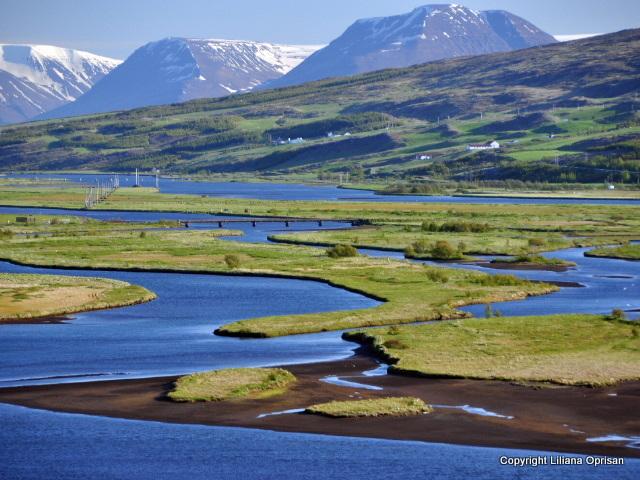 Site- ul de intalnire din Islanda