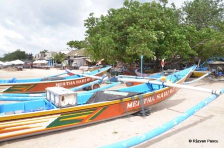 Insula Bali 13
