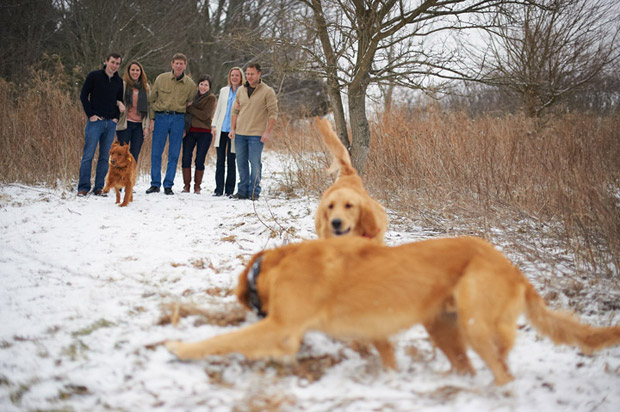 Family photos including pets